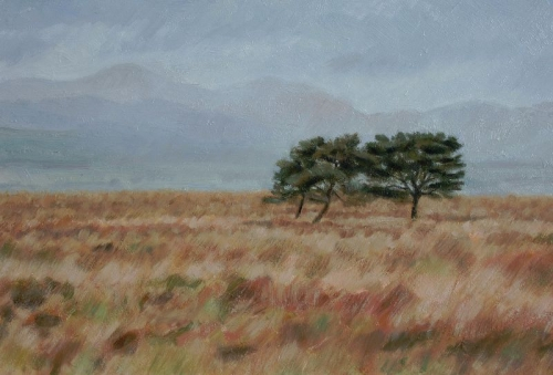 Dreich & 3 Lone Trees SOLD