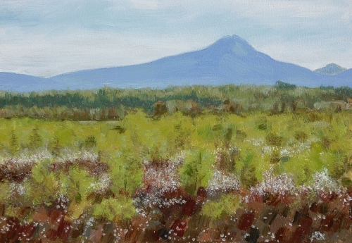 Ben Lomond from Flanders Moss, in the Carse of Stirling.Summer.