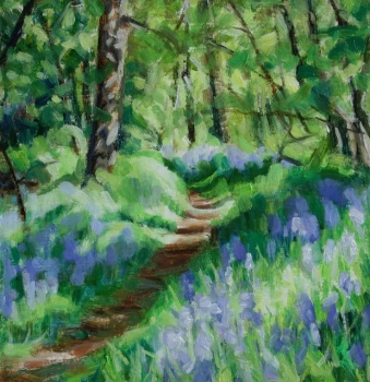 Killearn Glen bluebells 3