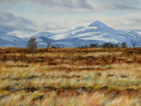 'Snow & bog. Ben Lomond from Kippen Muir'