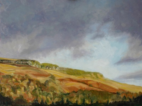'Fintry Hills from Fintry Cross'