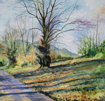 'Path to the Play Park, Fintry'