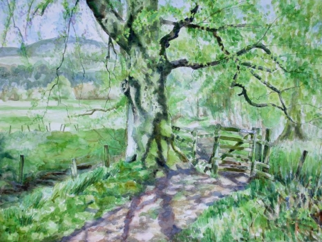 'Big tree, little gate, lade path, Fintry. Spring'