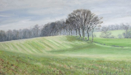 'Trees at the field edge'