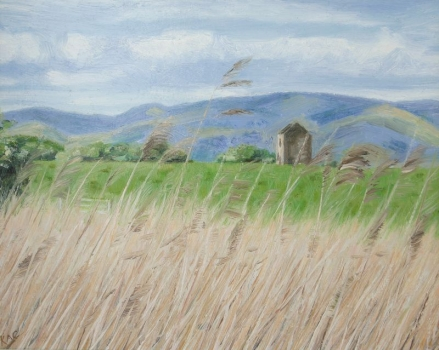 'Ochils & Tower from Skinflats'