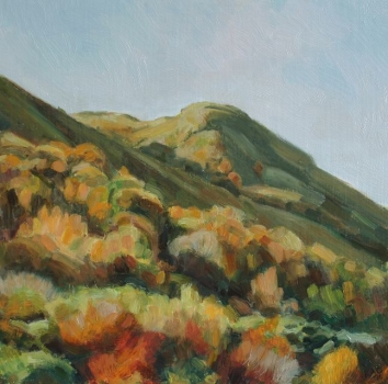 'Dunine from Fintry 14, Autumn'
