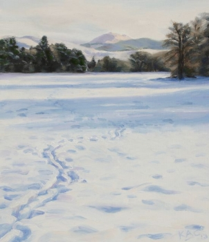 'Snow between the Lade and the River Endrick, Fintry'