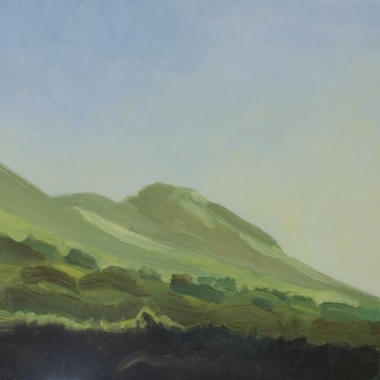 'Dunine from Fintry 7, Late Summer Afternoon'