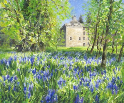 'Bluebells at Culcreuch Castle'