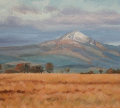 'Ben Lomond'. Sold out.