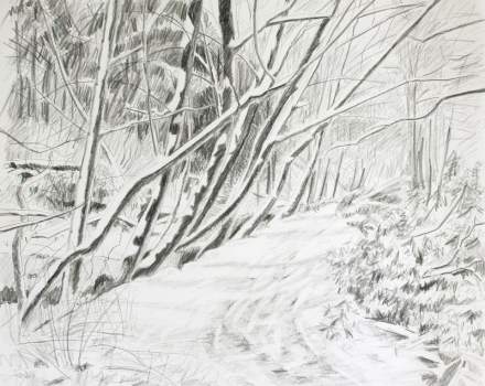 'Lade path in Snow'
